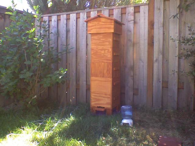 A Tall Warre Hive