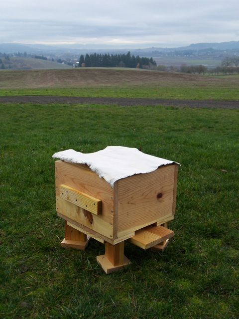 The Warre Hive Cloth Installed