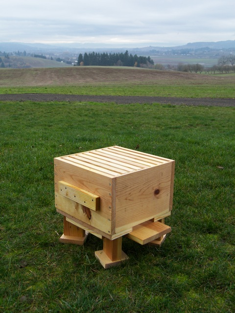 The Warre Hive Box Installed