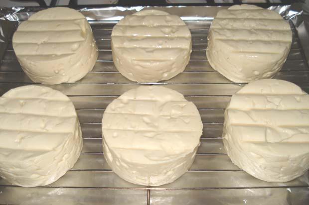 DTE camembert