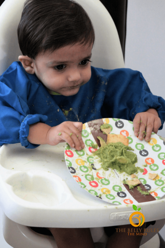 Avocado Baby Toddler Recipe