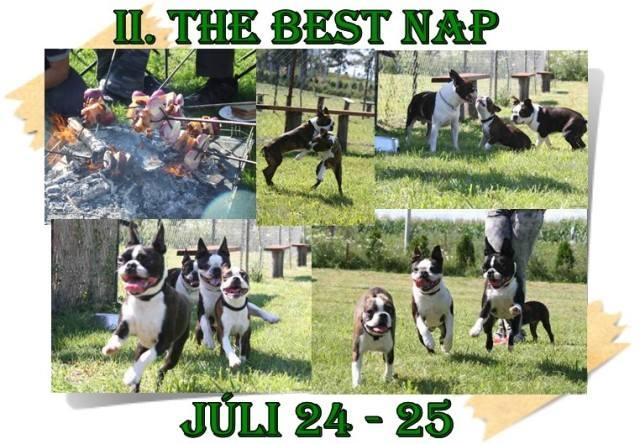 best nap 2009