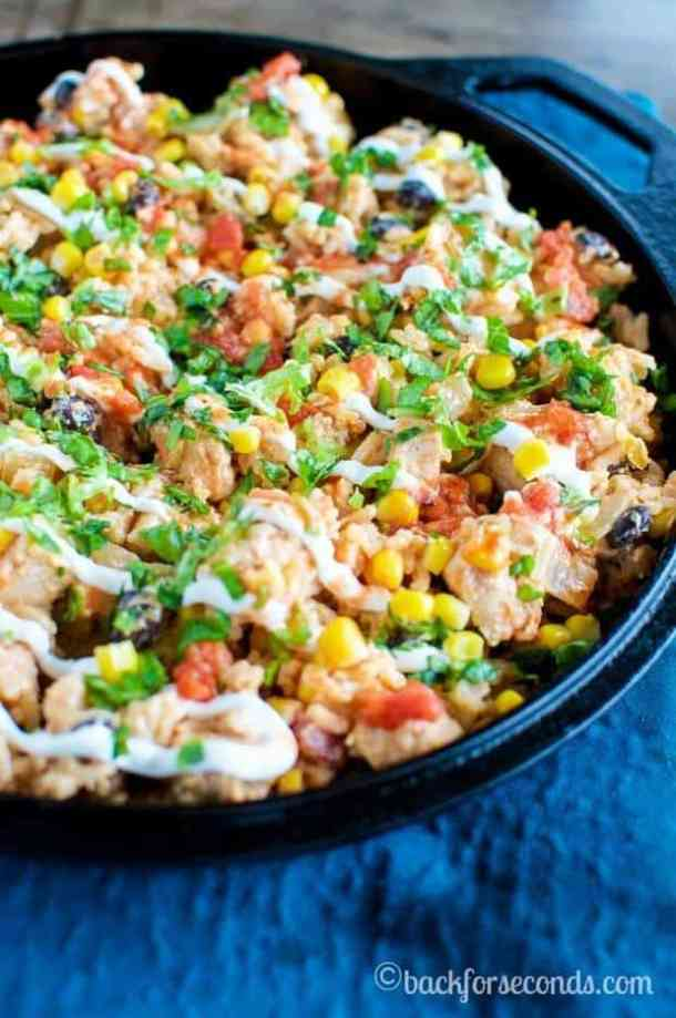 20 Minute Tex Mex Chicken Skillet