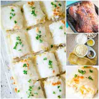 Chicken Alfredo Lasagna Roll Ups