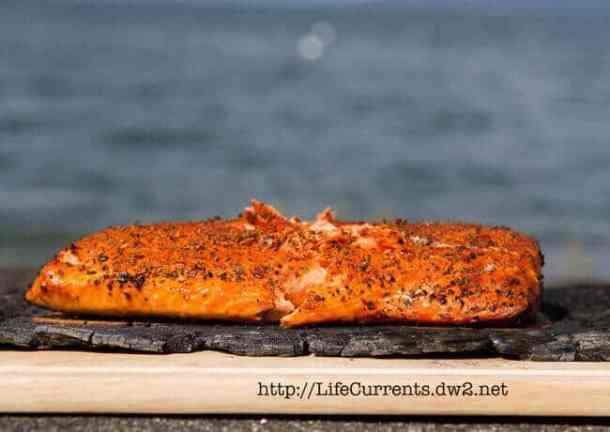 8 Cedar Plank Grilled Salmon