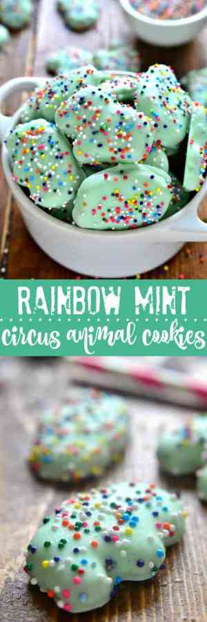 RAINBOW MINT CIRCUS ANIMAL COOKIES