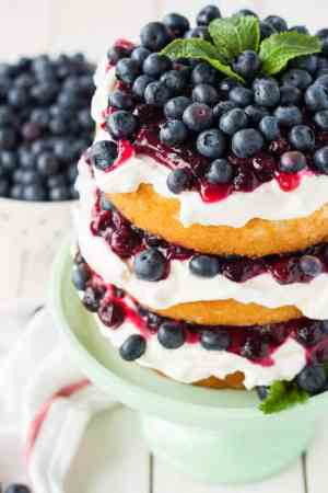 Blueberry Shortcake