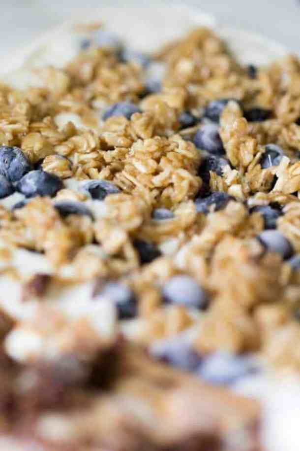 Blueberry Yogurt Bark Recipe