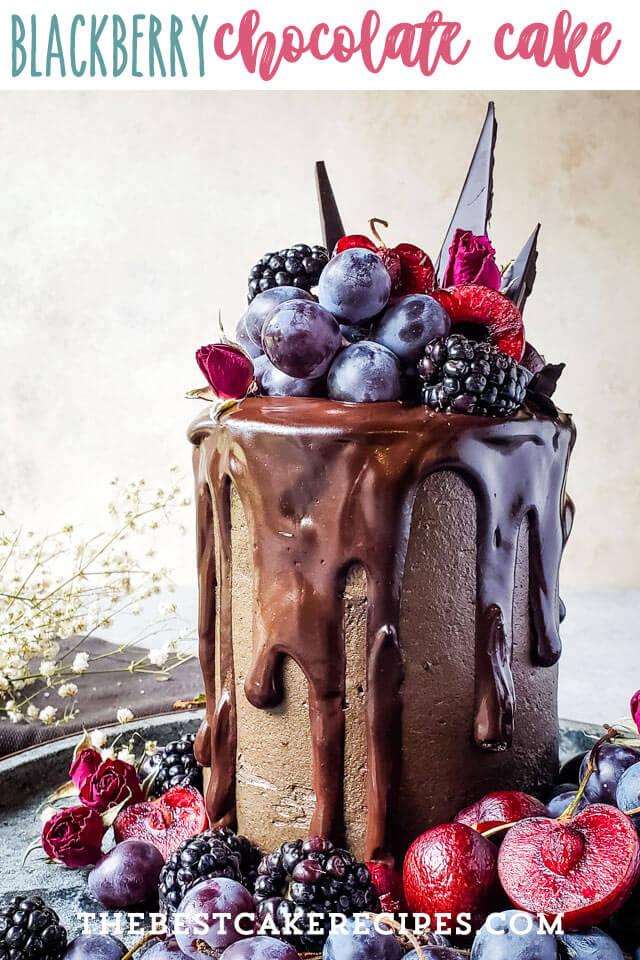 fancy chocolate layered cake with fresh fruit