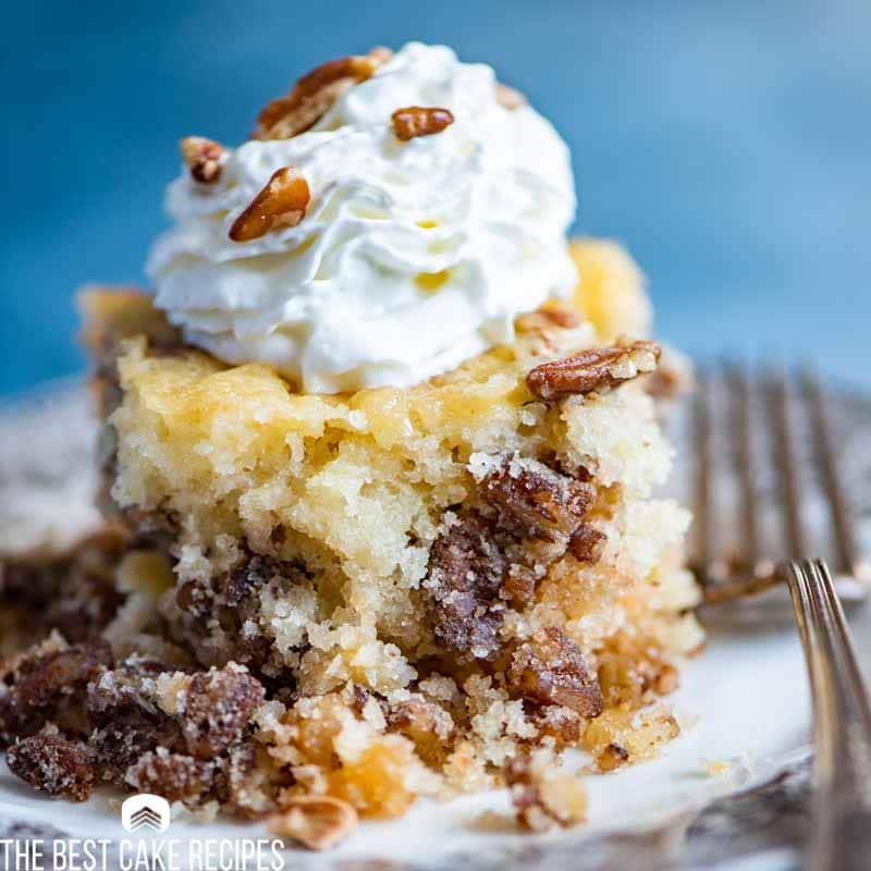 slice of Pecan Pie Cake Recipe