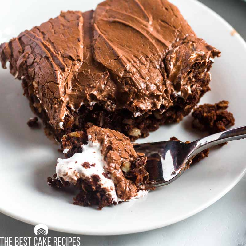 piece of chocolate marshmallow cake on a plate