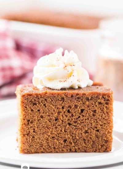 piece of gingerbread cake with whipped cream