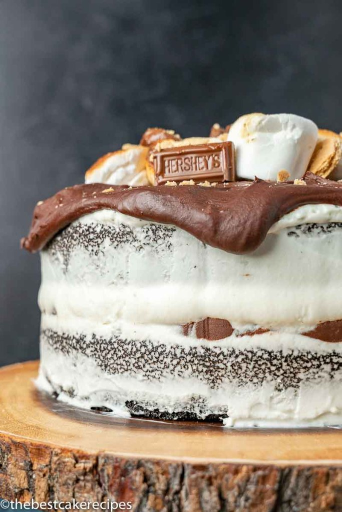 layered s'mores cake with chocolate ganache