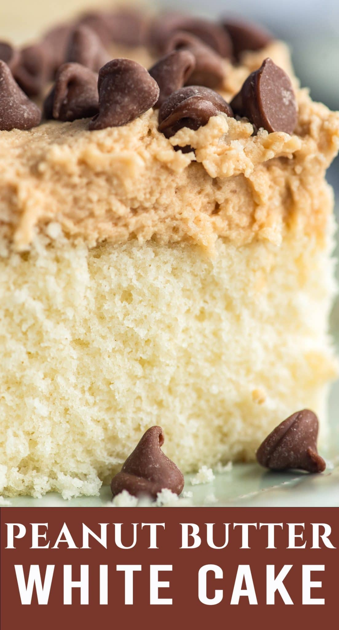 Fluffy homemade white cake with peanut butter frosting that will melt in your mouth! This is a great cake combination for those who don't love chocolate. via @thebestcakerecipes