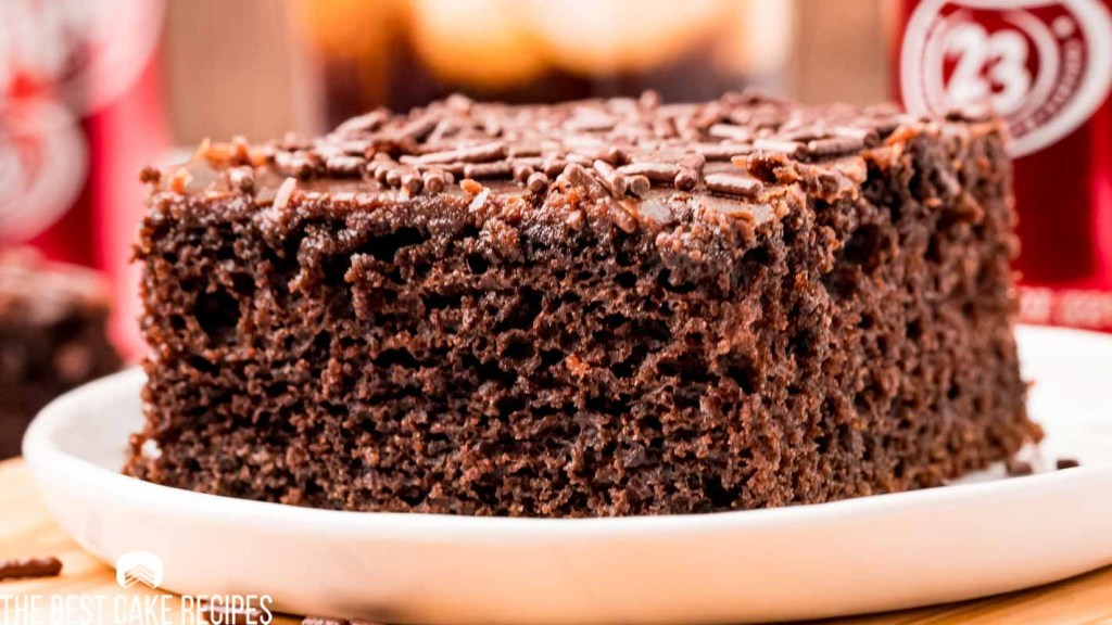 a closeup of a piece of chocolate cake on a plate