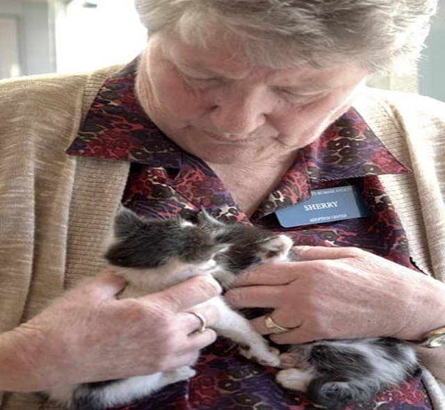 "Sherry Chapman, a retired veterinarian assistant from Lakewood, aptly nicknamed ""The Cat Whisperer"" said the program is always looking for volunteers, though she raves about her compassionate, committed volunteer staff of 14."