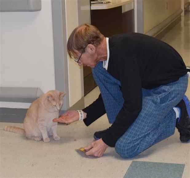 "Army veteran James Gearhart gives his favorite cat a treat to say ""thank you."""