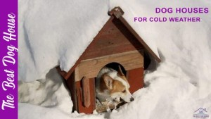 dog houses for cold weather
