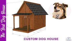 Custom dog house