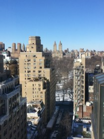 new york, snow, winter, the best dress up