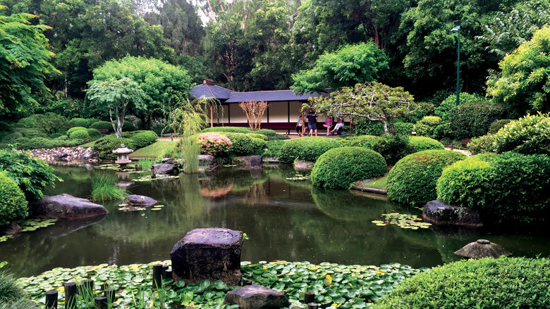 0416_japanese_garden_mt_cooth-tha_botanic_gardens_credit_kerry_heaney