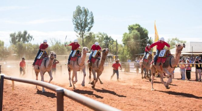 Camel-Cup-Alice-Springs-870x480