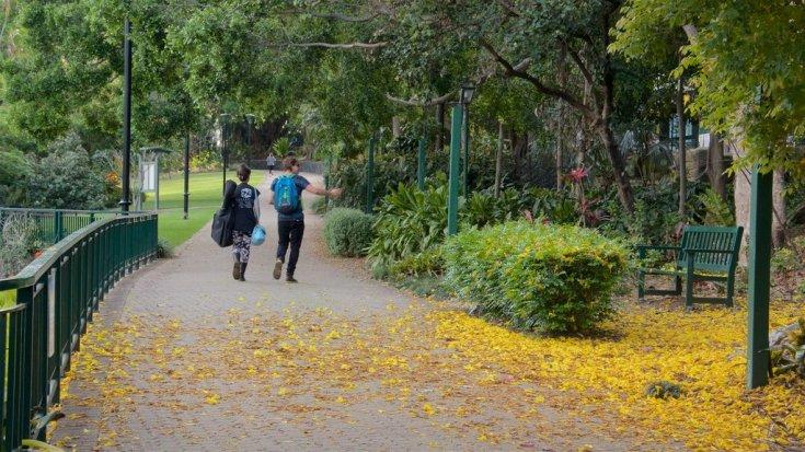 202136-Brisbane-City-Botanic-Gardens