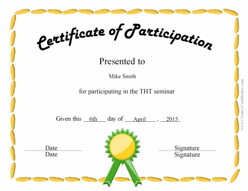 Certificate Of Participation Template Free Free Certificate Of Participation Templates For Download