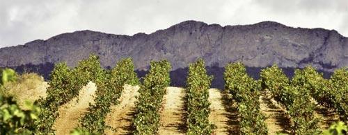 the ancient mystical Rioja Alavesa