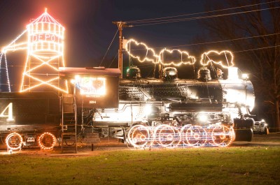 tanglewood lights train