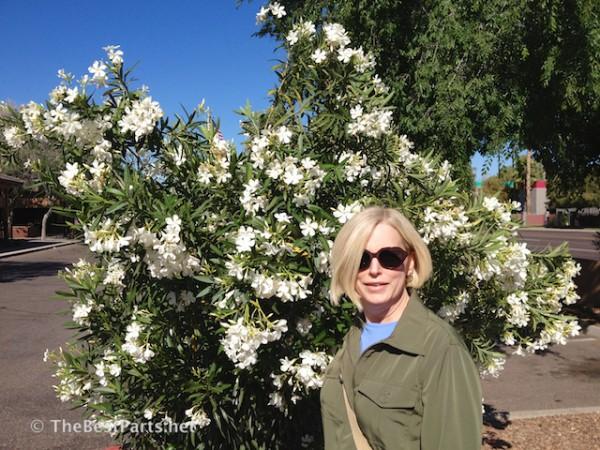 Gail in AZ