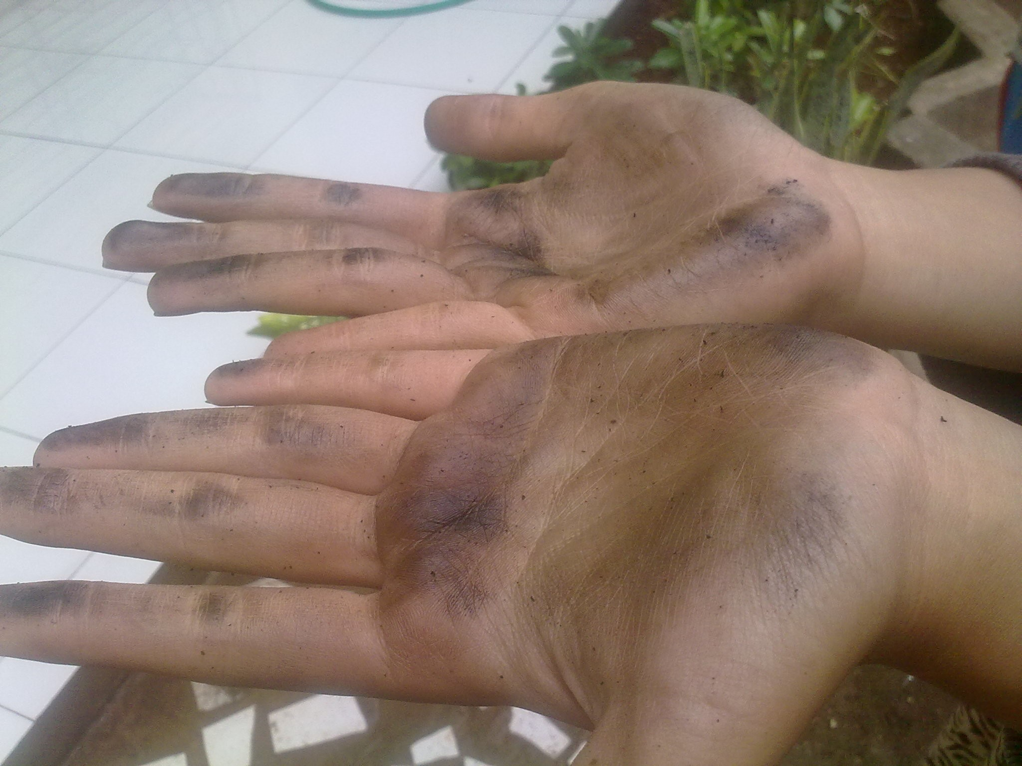 Hands that have been polluted with ink and charcoal then given the soap from wood ash cottonwoods that had been made later in the rub on both hand, the results are directly soluble impurities in the soap and liquid soap to black.