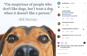 "Bill Murray ""suspicious of people but trust dogs"" quote"