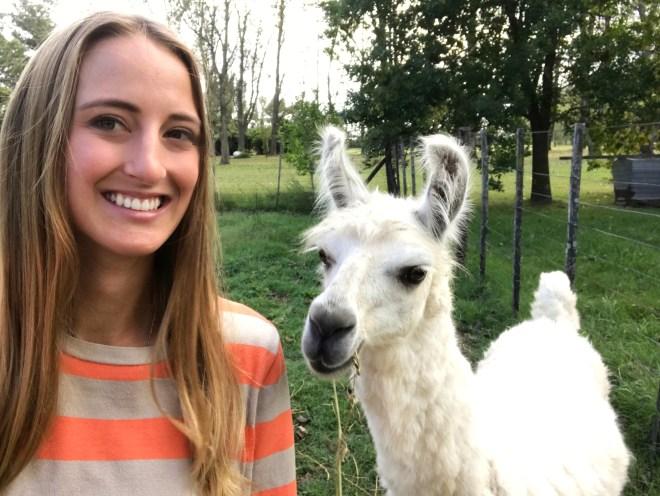 Llama_selfie_thebetterplaces.jpg