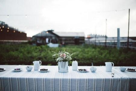 Stedsans Copenhagen Farm to Table Restaurant The Better Places City Guide