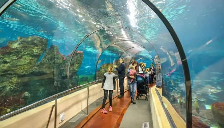 Barcelona Aquarium tunnel