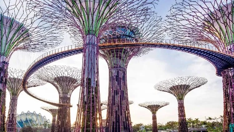 OCBC Skyway at Gardens by the Bay