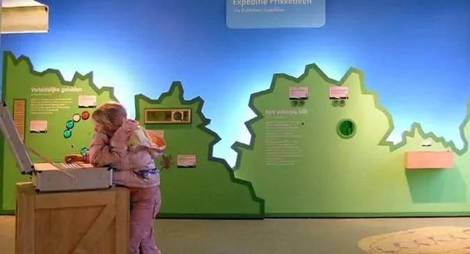 Artis Zoo Insectarium