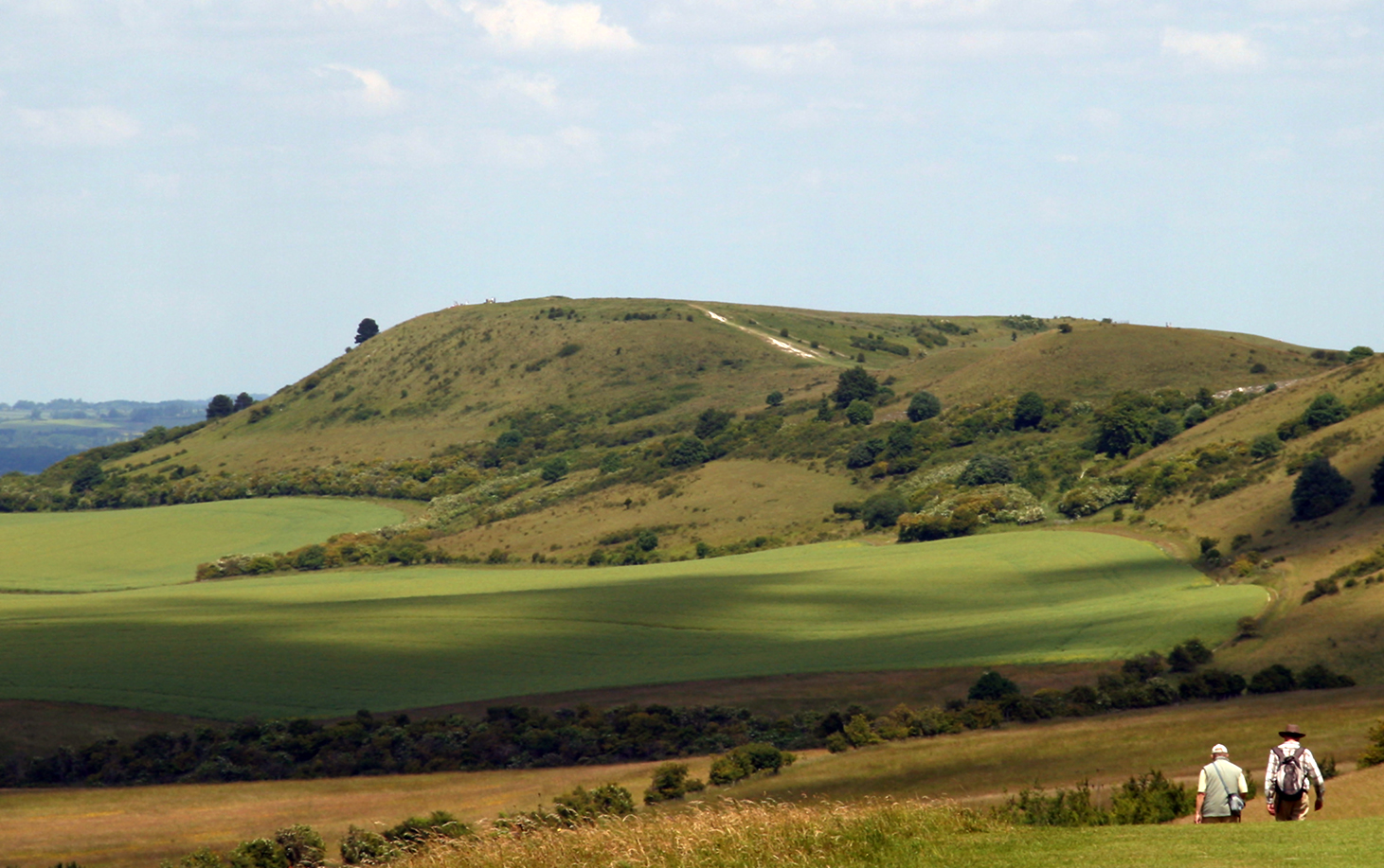 Chiltern hills