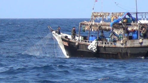 US$23.7m lost in fishing license fees yearly