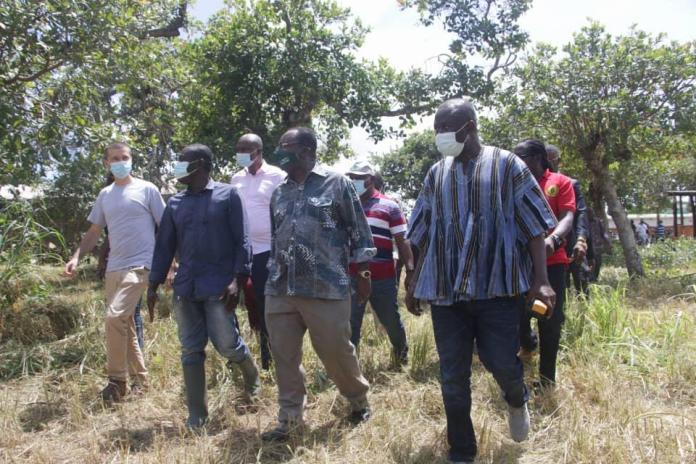 Agric Minister begins tour of 5 regions