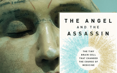 Book Review: The Angel and the Assassin by Donna Jackson Nakazawa