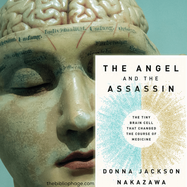 Donna Jackson Nakazawa: The Angel and the Assassin