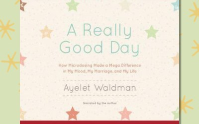 Ayelet Waldman — A Really Good Day (Book Review)
