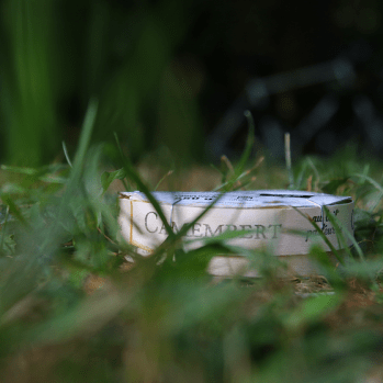 I call this: Camembert in grass