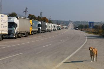 Five-kilometre lorry queue on Turkish side of border at Hamzabeyli. And a hound.