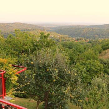 High in the hills, just 15 mins outside Zagreb.