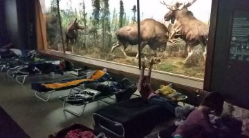 A Night at the Museum Sleepover @AMNH NYC