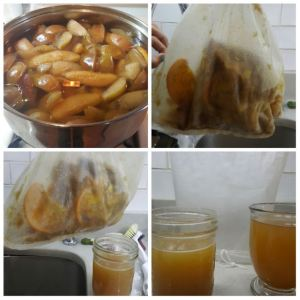 how-to-strain-fruit-pulp-using-fine-mesh-food-strainer-bag