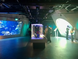 Frost Science Museum - 1 (10)